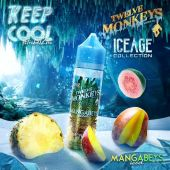 Mangabeys Iced by Twelve Monkeys 50 ml